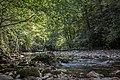 Rijeka Prača, kanjon.jpg