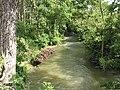 River Evenlode running downstream nr Charlbury - geograph.org.uk - 489438.jpg
