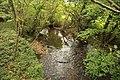 River Lemon at Millcross Bridge - geograph.org.uk - 1018039.jpg