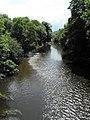 River Severn - Afon Hafren - geograph.org.uk - 1389102.jpg