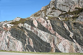 Lewisian complex - Scourie dykes (now foliated amphibolites) cutting grey gneiss of the Scourie complex, both deformed during the Laxfordian tectonic event and cut by later (unfoliated) granite veins - road cutting on the A838 just north of Laxford Bridge