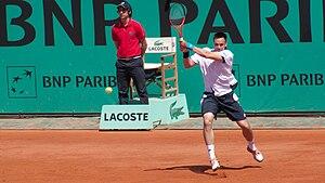 Robin Söderling - Söderling at the 2010 French Open