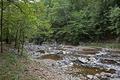 Rock Creek Park, NW, Washington, D.C LCCN2010641479.tif