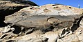 Rock formation at Point Lobos 04-072010.jpg