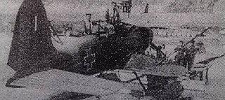 Romanian Heinkel 114