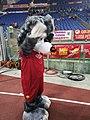 Romolo mascotte AS Roma.jpg