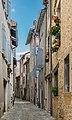 Rue des Fours Banniers in Villefranche-de-Rouergue.jpg