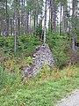 Ruin in Newborough Forest - geograph.org.uk - 226521.jpg
