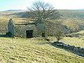 Ruined barn - geograph.org.uk - 699667.jpg