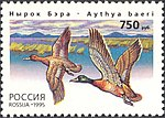 Russia stamp 1995 № 243.jpg