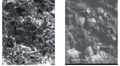 SEM images of non-traditional oil and as resrvoir sandstone, with low electrical resistance. Ukraine, Dnipro-Donets Depression.png