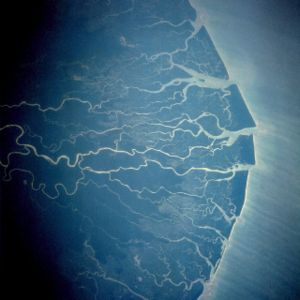Petroleum industry in Nigeria - Satellite image of Niger Delta