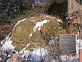 Saalburg 2012-02-05 7518 Steinerne Rose.jpg
