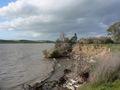 Sacramento river delta p1080765.jpg