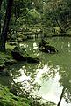 Saihoji kokedera-08.jpg