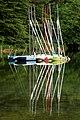 Sailboats at Lake Bohinj.jpg