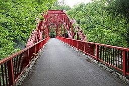 Sakura-bridge2018