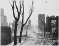San Francisco Earthquake of 1906, This is Grant Avenue looking south toward Market Street. The large buildings to the... - NARA - 531052.tif