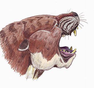 Creodonta - Sarkastodon