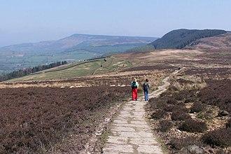 Lyke Wake Walk - Scarth Wood Moor