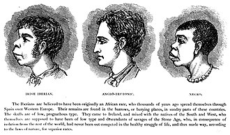 "Other (philosophy) - Scientific racism of the Other: In the late-19th century, H. Strickland Constable justified anti-Irish racism among white people by claiming similarity between the cranial features of ""the Irish-Iberian"" man (left) and ""the Negro"" man (right), as proof that each man is racially inferior to the Anglo-Teutonic man (centre) possessed of the cranial ideal."