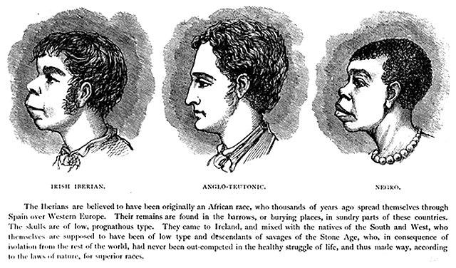 File:Scientific racism irish.jpg - Wikimedia Commons