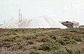 Sea salt heap. San Fernando near Cadiz. Suaeda fruticosa. 2 yards from it, Trifolium fragiferum, Melilotus, Medicago. April 1975 (37047727144).jpg