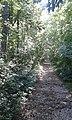 Sentiero Rilke a Duino.jpg