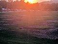 Setting Sun Glare.jpg