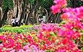 Shilin Residence Park 士林官邸公園 - panoramio (2).jpg