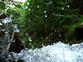 Shypit Mizhhirskyi Zakarpatska-waterfall-4.jpg