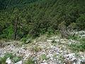 Slovensky raj, a view from Tomasovsky vyhlad, 10.jpg