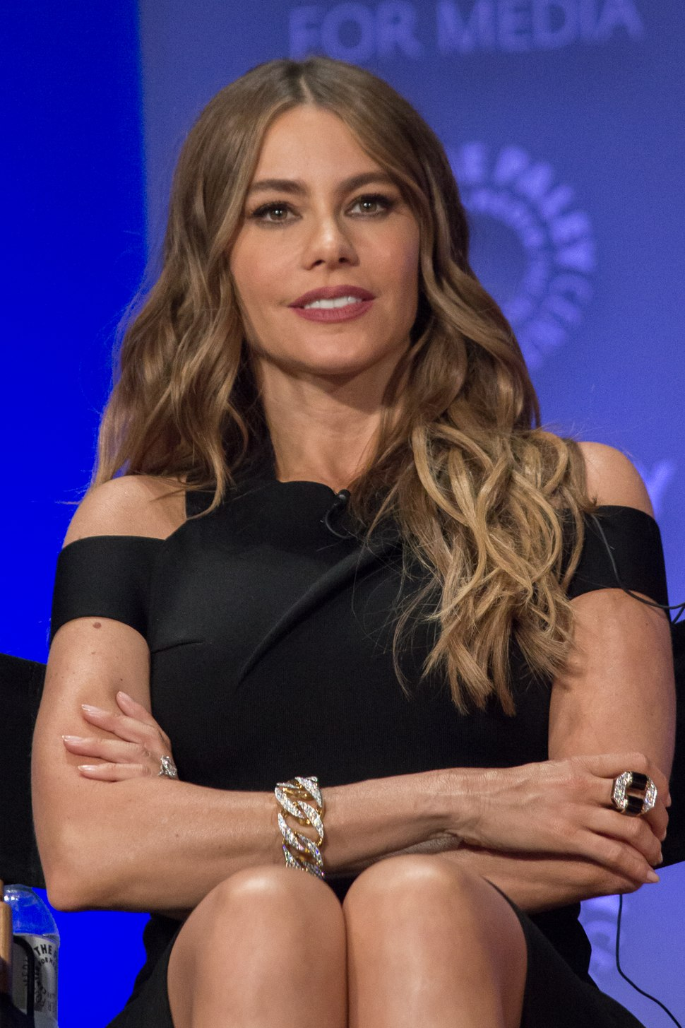 Sofía Vergara at 2015 PaleyFest