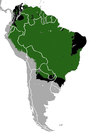 South American Tapir area.png