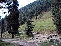 Srinagar - Pahalgam views 69.JPG