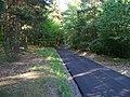 Stěžov, lesní cesta u hájovny Na Pelechu.jpg