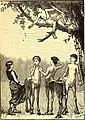 St. Nicholas (serial) (1873) (14781990791).jpg