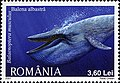 Stamps of Romania, 2007-104.jpg