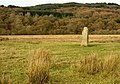 Standing Stone at Kilmichael Glassary, Argyll - geograph.org.uk - 77817.jpg