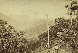 Stone Bridge, Dalrymple Gap Track - Dalrymple Gap near Cardwell, 1874