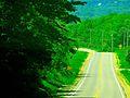 State Highway 113 - panoramio.jpg