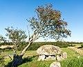 Stenvad (Norddjurs Kommune).50 kroners Dyssen.12.42459.ajb.jpg