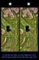 Stereo Pair, Lake Palanskoye Landslide, Kamchatka Peninsula, Russia Corrected.png