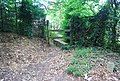 Stile at the beginning of a footpath - geograph.org.uk - 940797.jpg