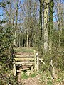 Stile into Ox Lodge Wood - geograph.org.uk - 1804439.jpg