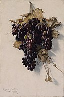 Still Life with Grapes SAAM-1989.102 1.jpg