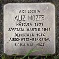 Stolperstein für Aliz Mozes.JPG