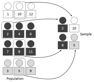 Sampling (statistics) - A visual representation of selecting a random sample using the stratified sampling technique