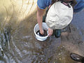 Streams sampling (6077359838).jpg