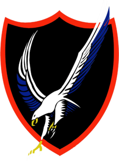 United States Navy aviation squadron based at NAS Oceana, Virginia, USA